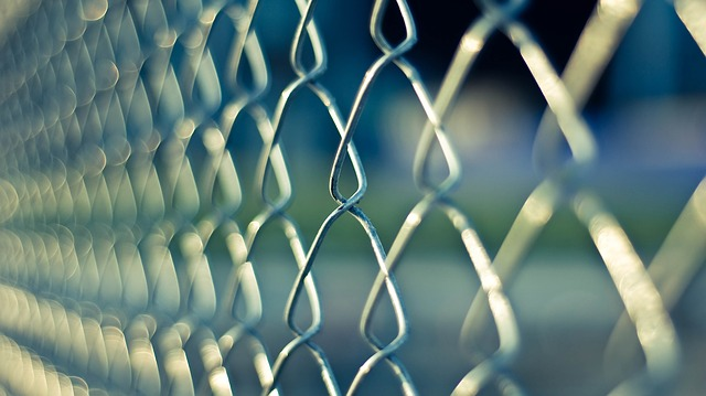 chain link fence refugees alchemy for life coach