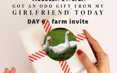 Sixth Day – farm invitation
